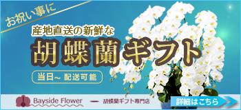胡蝶蘭ギフトのベイサイドフラワー