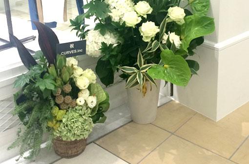 胡蝶蘭以外でおすすめはアレンジメント・花束