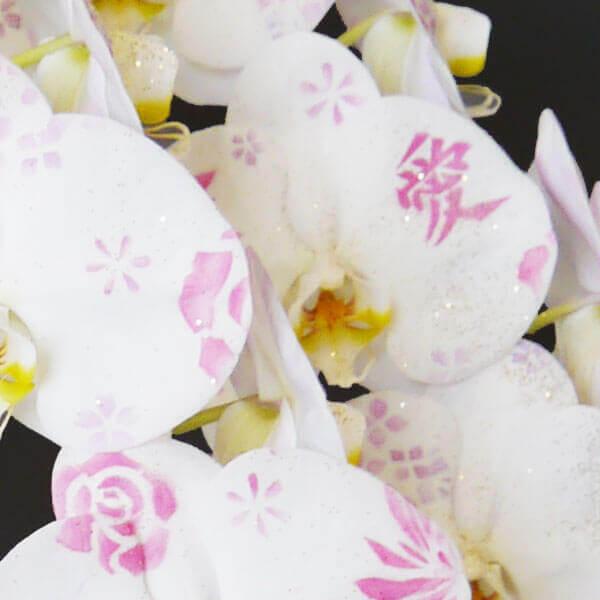 デコレーション化粧蘭