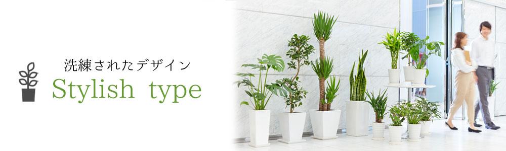 観葉植物 陶器鉢 スタイリッシュタイプ