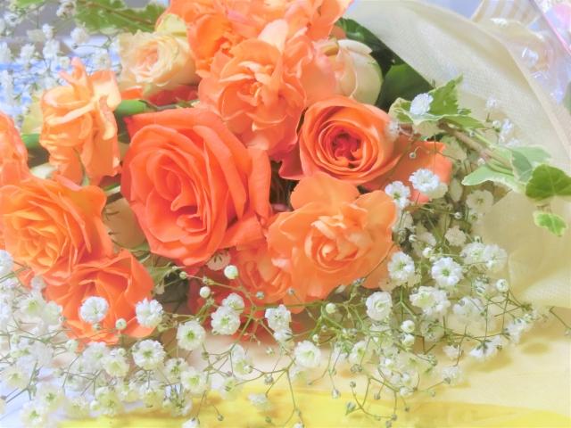 人はなぜ「花を美しいと感じるのか」