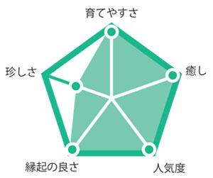観葉植物ポトス グラフ