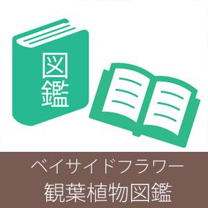 ベイサイドフラワー観葉図鑑